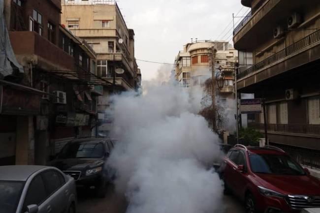 مع ازدياد انتشار الحشرات . محافظة دمشق تعلن عن برنامج أسبوعي لرش المبيدات يغطي كافة أحياء المدينة