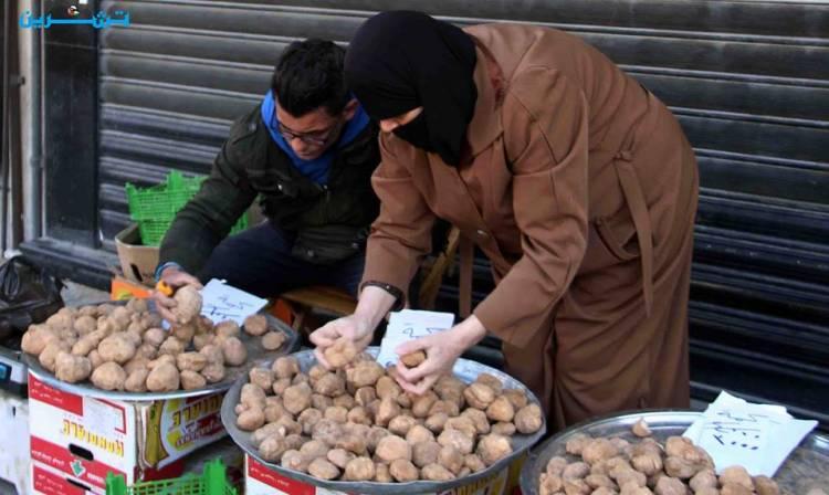 أسعار الكمأة تنخفض من 20 ألف ليرة للكيلو إلى إلى 3000 ليرة بدمشق و1500 ليرة في حلب!