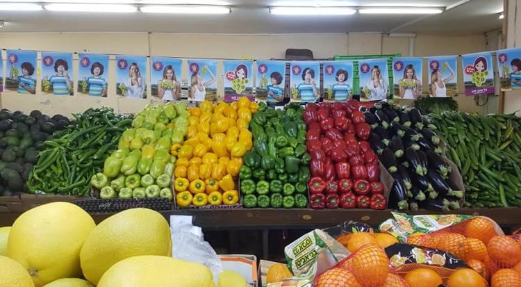 تعرفوا على أسعار المواد الغذائية والخضار والفواكه واللحوم بدمشق اليوم